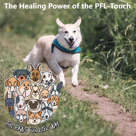 The Healing Power of The PFL Touch